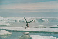 Augustana's Outdoor Pursuits Program -- Ever done cartwheels on a floating iceberg in the high Arctic?